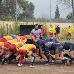 Murcia XV - Club Rugby Albacete
